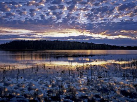 Thunder Lake, Minnesota Photograph by Jack Dykinga